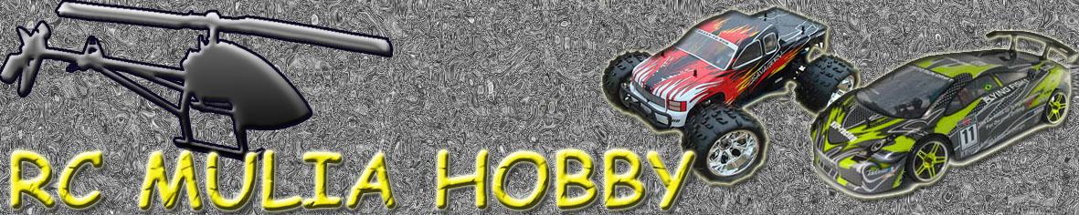RC Mulia Hobby web store