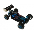 Electric RC Car